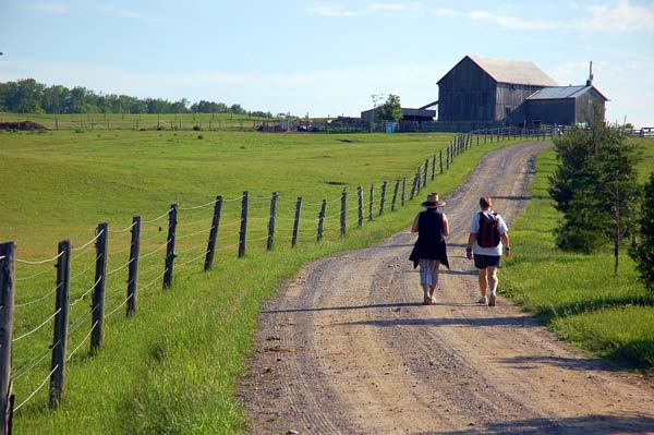 Morning walk up to the farm at Elmhirst Resort