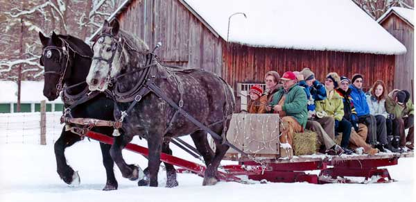 horse-drawn sleigh rides at Pine Vista Resort